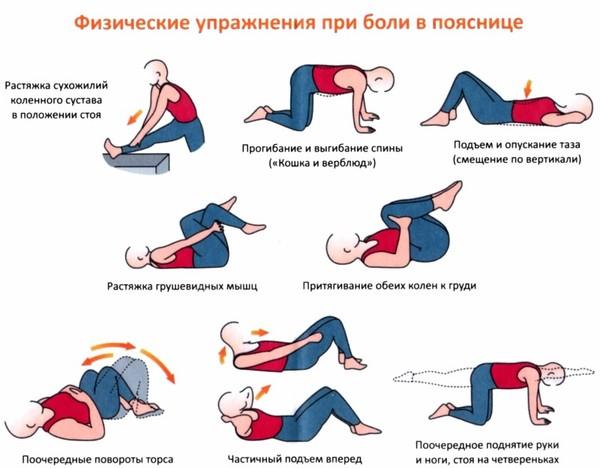 комплекс упражнения для позвоночника