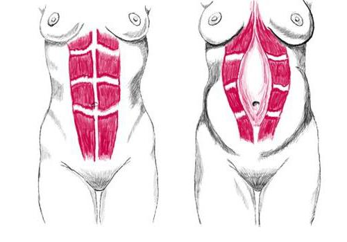 Изменения, происходящие во время беременности