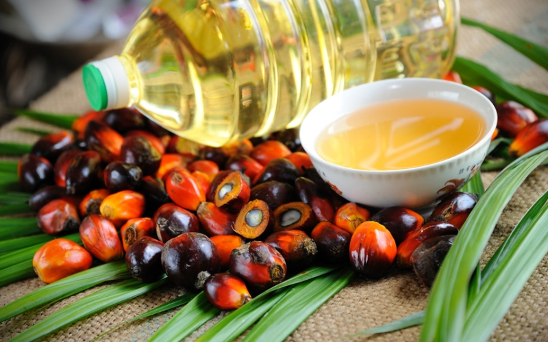 Пальмовое масло в составе Энерджи диет