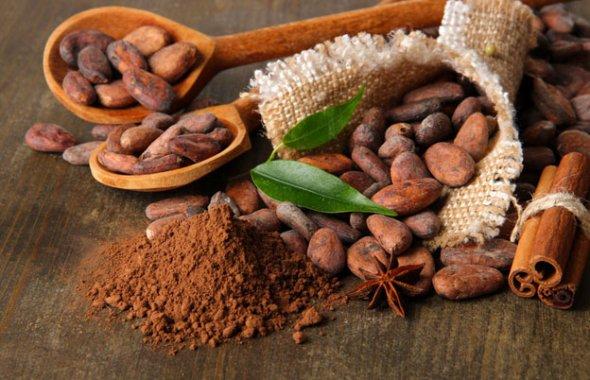 Состав какао-бобов