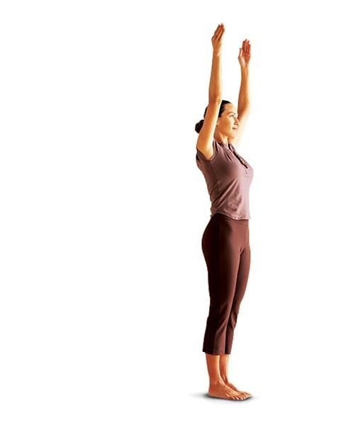 Упражнения для роста тела